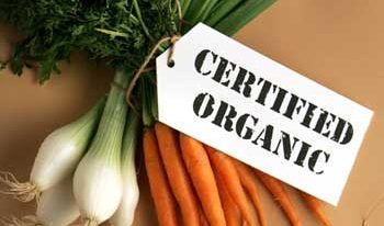 Things to Always Buy Organic & Why