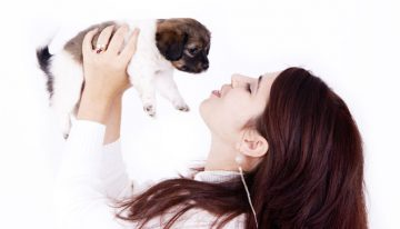 Pet-Friendly Events for You and Your Pup in Phoenix