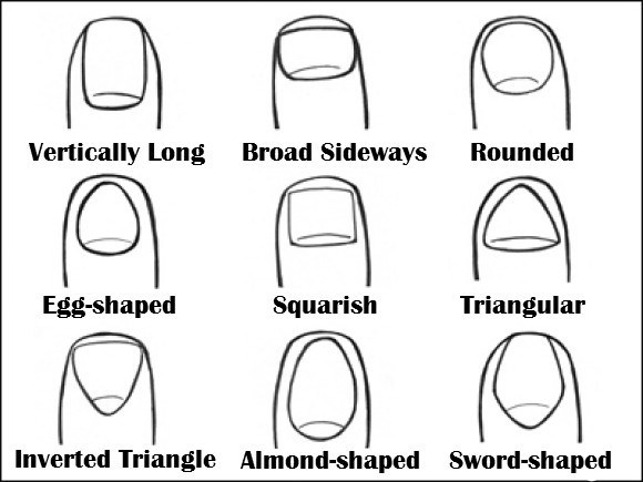 New Studies Show Nail Shape Links to Your Personality