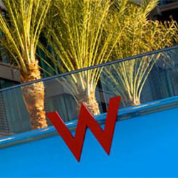 W Scottsdale's January Happenings: Yoga, Live Music, Beauty Expo and More!